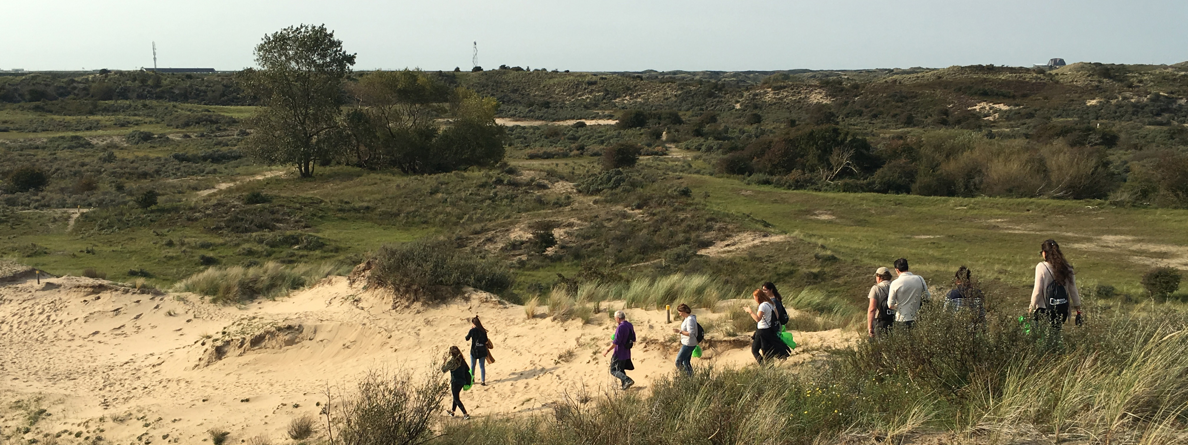 exploring Dutch nature dunes